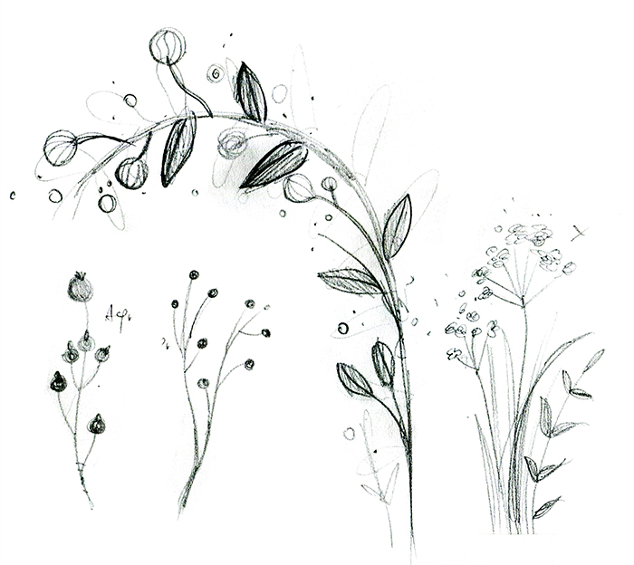 emily_dickinson_pencilsketch_flowers